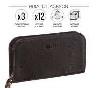 Компактный мужской клатч BRIALDI Jackson (Джексон) relief brown в магазине Galantmaster.ru фото